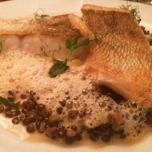 Pikeperch fillet on lentils and lobster mousse